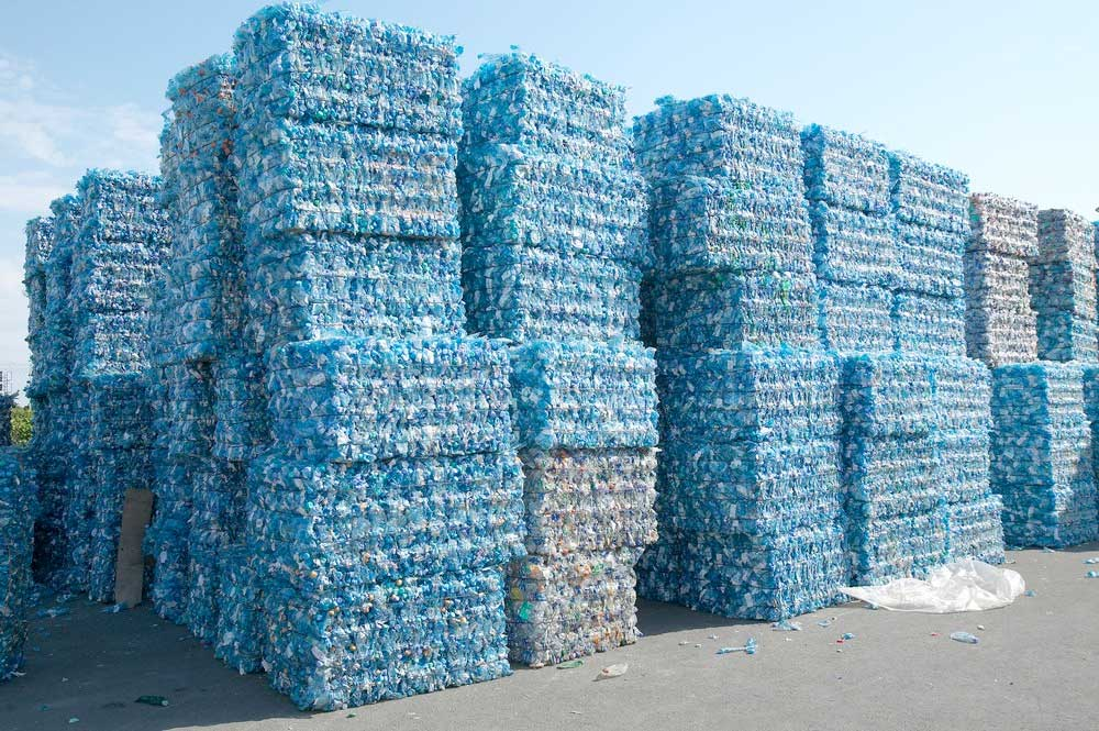 Eco Business-Plastic Forests