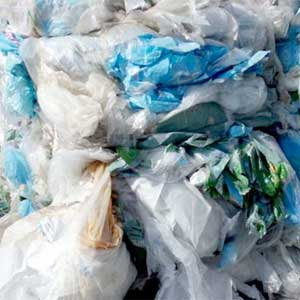 Plastic Forests industrial film recycling