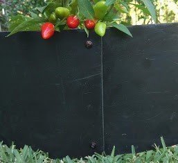 raised garden bed circle -recycled plastic