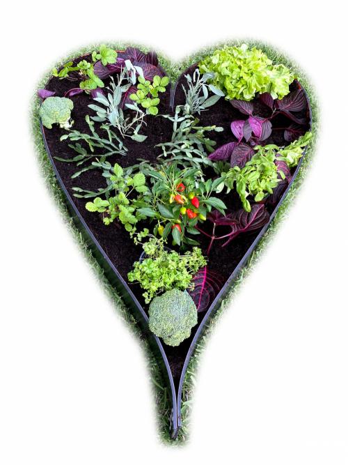 Garden Bed heart plastic
