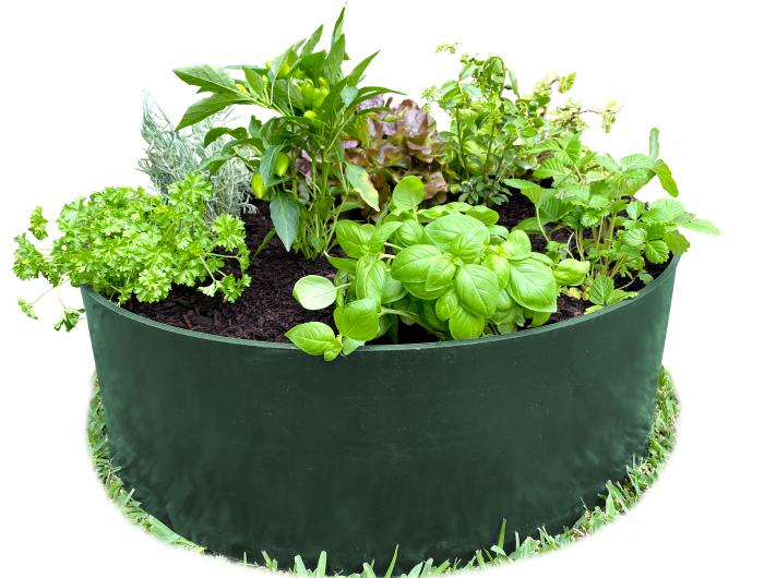 Dark Green Garden Bed Circle